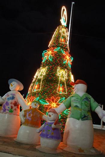 Cozumel Christmas: Come Celebrate!