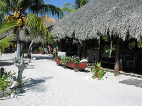 The entrance to the beach is quaint and rustic.