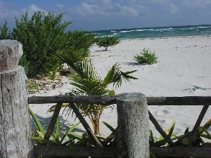 Secluded Cozumel Beaches.