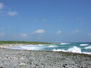 Cozumel beaches with rip tides.